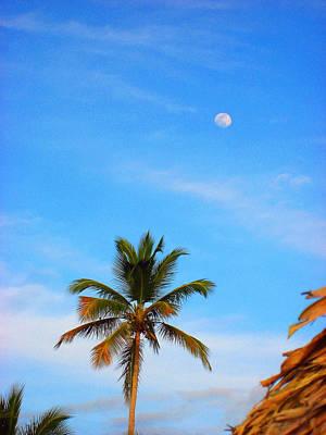 Moon. Palma. Sky. Original by Andy Za