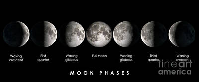 Waning Gibbous Moon Photograph - Moon Phases by Delphimages Photo Creations