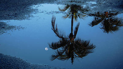 Photograph - Moon Puddle Delray Beach Florida by Lawrence S Richardson Jr