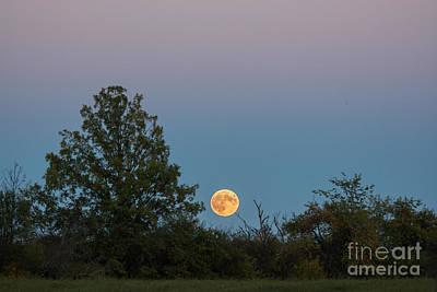 Photograph - Moon Rise Landscape by Cheryl Baxter