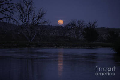Photograph - Moon Rise Over The Tongue by Shevin Childers