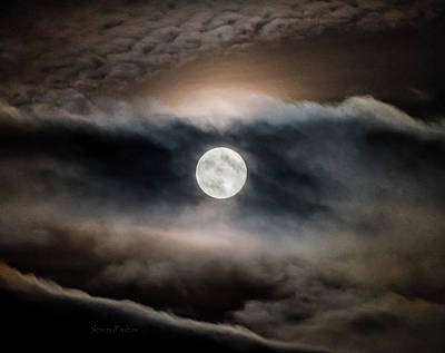 Photograph - Moon Rise Through Sunset by Steven Poulton