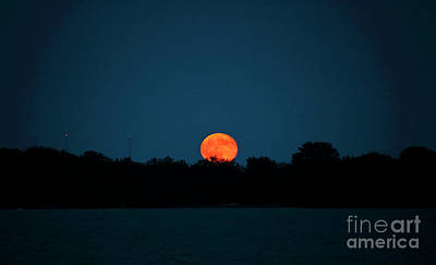 Photograph - Moon Rising by Charline Xia