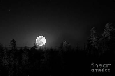 Photograph - Moon Rising by Dan Friend