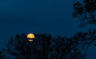 Photograph - Moon Rising by Robert McKay Jones