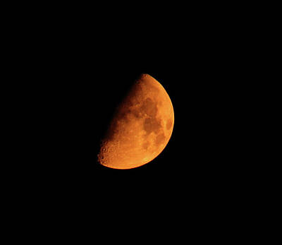 Photograph - Moon by Rowana Ray
