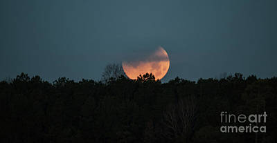 Photograph - Moon Scape by Dale Powell
