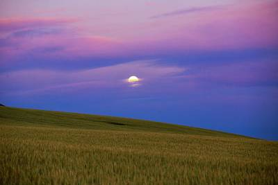 Photograph - Moon Setting by Lynn Hopwood