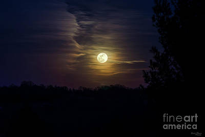 Photograph - Moon Silhouette by Jennifer White