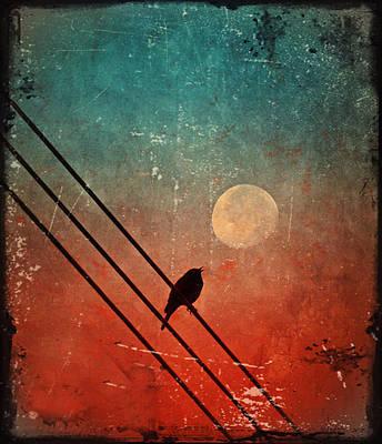 Moon Talk Art Print by Tara Turner