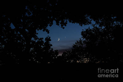 Photograph - Moon Venus, Jupiter by Serena Ballard