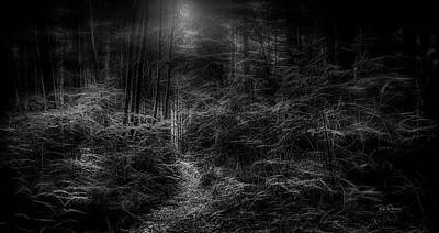 Photograph - Moon Woods by Bill Posner