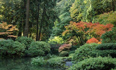 Photograph - Moonbridge Autumn Serenade by Don Schwartz