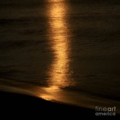Malibu Photograph - Moondance by Maureen J Haldeman