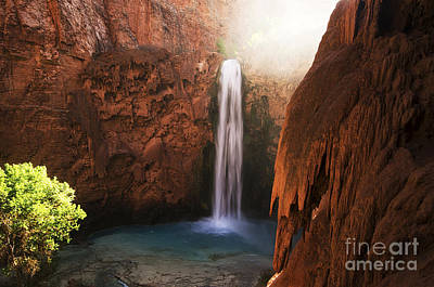 Photograph - Mooney Falls Grand Canyon 1 by Bob Christopher