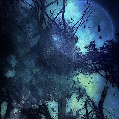 Photograph - Moonglow by Michele Carter
