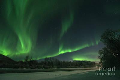 Yukon River Photograph - Moonlight Aurora by Priska Wettstein