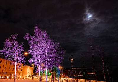 Kiruna Photograph - Moonlight And Colored Trees by Jonas Sundberg