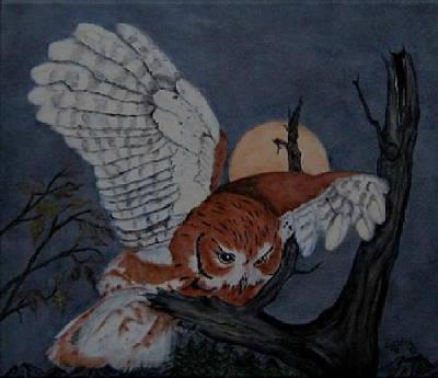 Moonlight Flight Art Print by Sandra Maddox