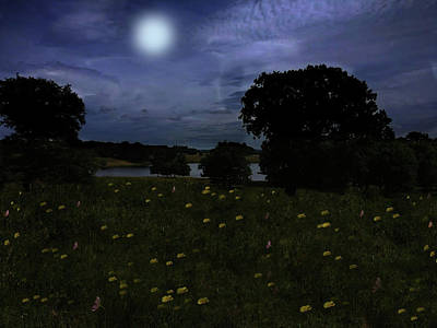 Mixed Media - Moonlight Flowers In Cheshire by David Dehner