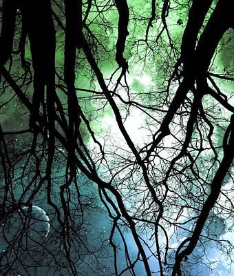 Starry Digital Art - Moonlight Forest  by Marianna Mills