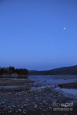 Photograph - Moonlight Harmony by Victor K