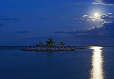 Photograph - Moonlight Island by Jill Love