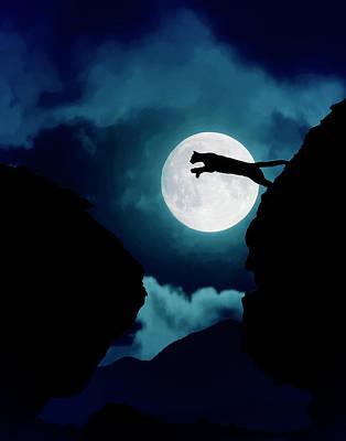 Photograph - Moonlight Leap by Roy Nierdieck