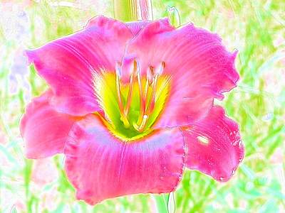 Photograph - Moonlight Magic Daylily by Belinda Lee