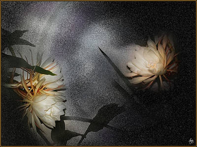 Photograph - Dance Of The Night Blooming Cereus  by Wayne King