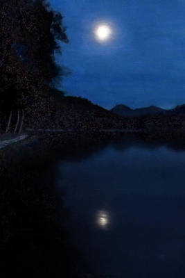Painting - Moonlight On Lake Wolfgang by Menega Sabidussi