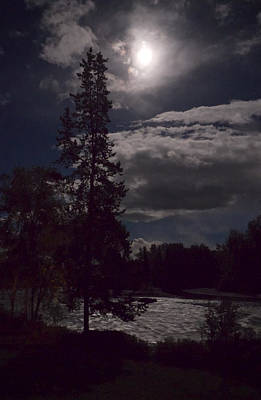 Photograph - Moonlight On The River by Mary Lee Dereske