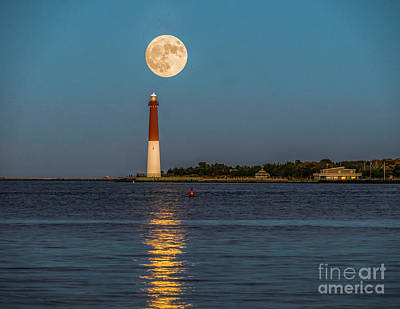 Photograph - Moonlight Over Barnegat Lighthouse by Nick Zelinsky