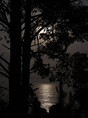 Photograph - Moonlight Over The Pacific by Derek Dean