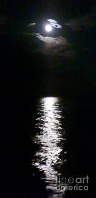 Photograph - Moonlight Path by Barbie Corbett-Newmin