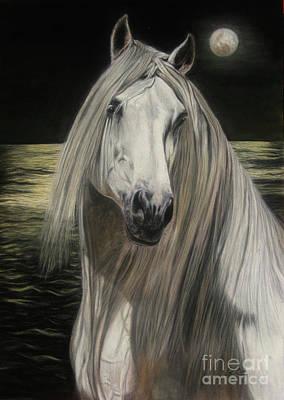 Moonlight Art Print by Sabine Lackner
