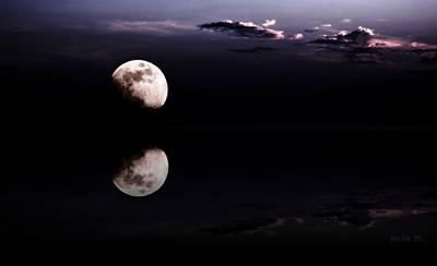 Moonlight Shadow Art Print by Steve K