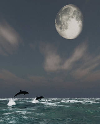 Dolphins Digital Art - Moonlight Swim by Richard Rizzo