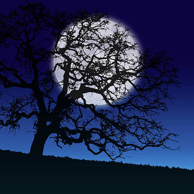 Painting - Moonlight Tree by Gary Grayson