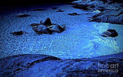 Photograph - Moonlight Water Garden by Tim Richards