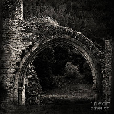 Photograph - Moonlit Archway by Liz Alderdice