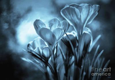 Moonlit Mixed Media - Moonlit Crocus by KaFra Art