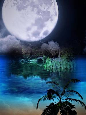 Photograph - Moonlit Island by Nancy Pauling