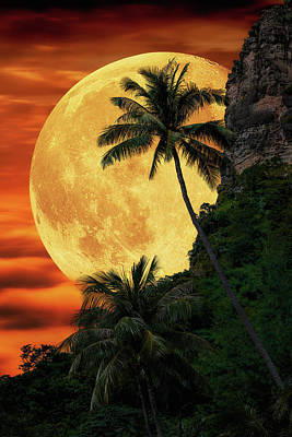 Photograph - Moonlit Paradise by Justin Kelefas
