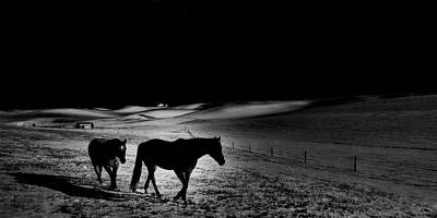 Photograph - Moonlit Stroll by David Patterson