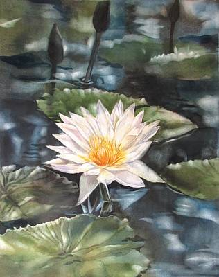Painting - Moonlit Waterlily by Alfred Ng