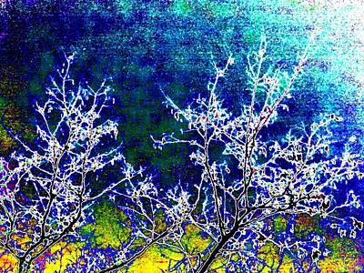 Digital Art - Moonlit Winter Abstract by Will Borden