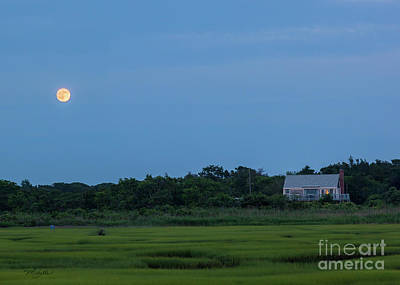 Photograph - Moonrise At Grays Beach by Michelle Constantine