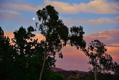 Moonrise At Sunset Photograph - Moonrise At Sunset 1 by Linda Brody