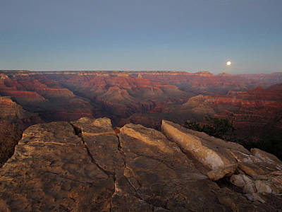 Photograph - Moonrise At The Grand Canyon by Laurel Powell